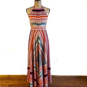 Eliza J Maxi Dress Multi Color Size 6 petite